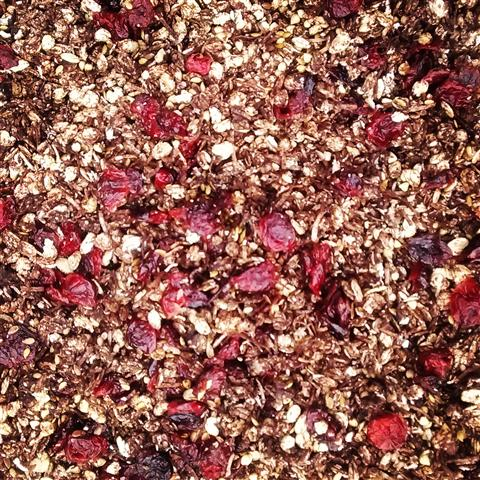 chocolate cranberry granola (Small)